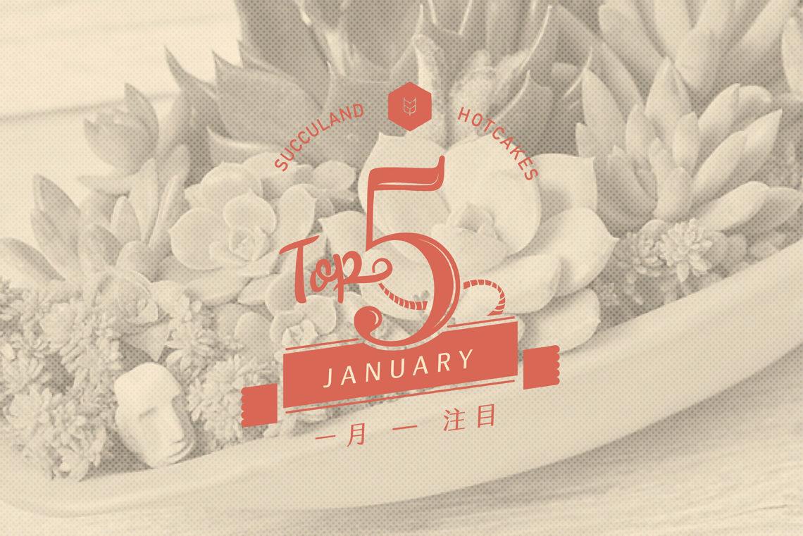 有肉 1 月新春開幕花籃 TOP 5 1月 01