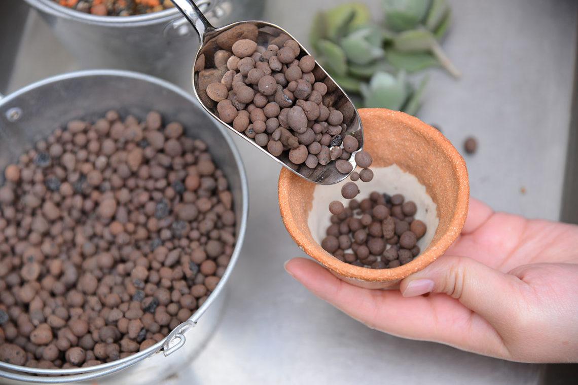 多肉植物專用土:發泡煉石
