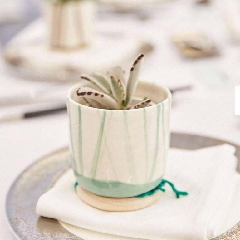 婚禮贈品-多肉盆栽