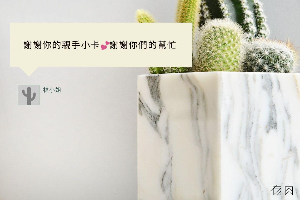 銀狐白大理石盆 - 仙人掌組 00007