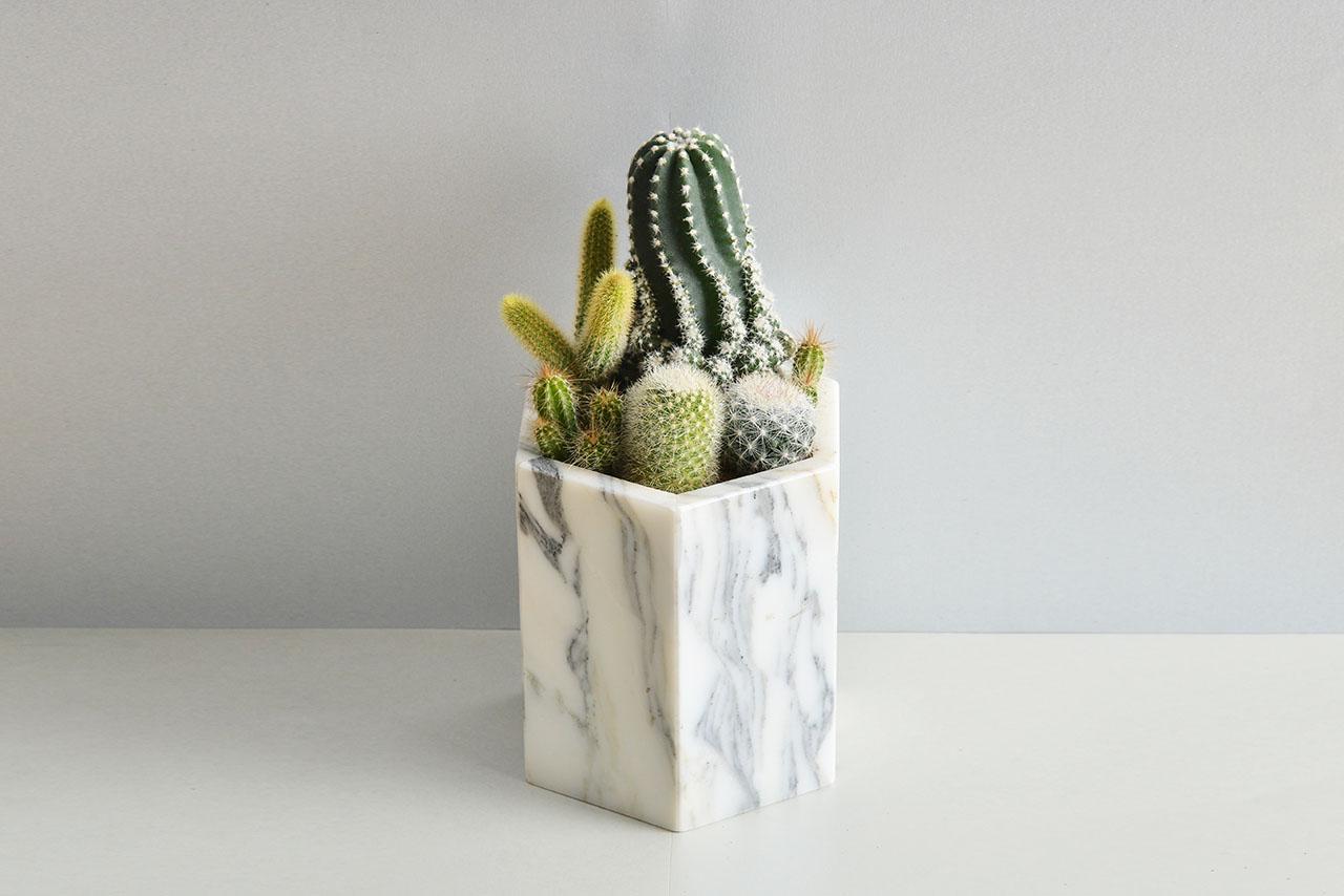 銀狐白大理石盆 - 仙人掌組 0308生肖與金光閃閃多肉植物 1578
