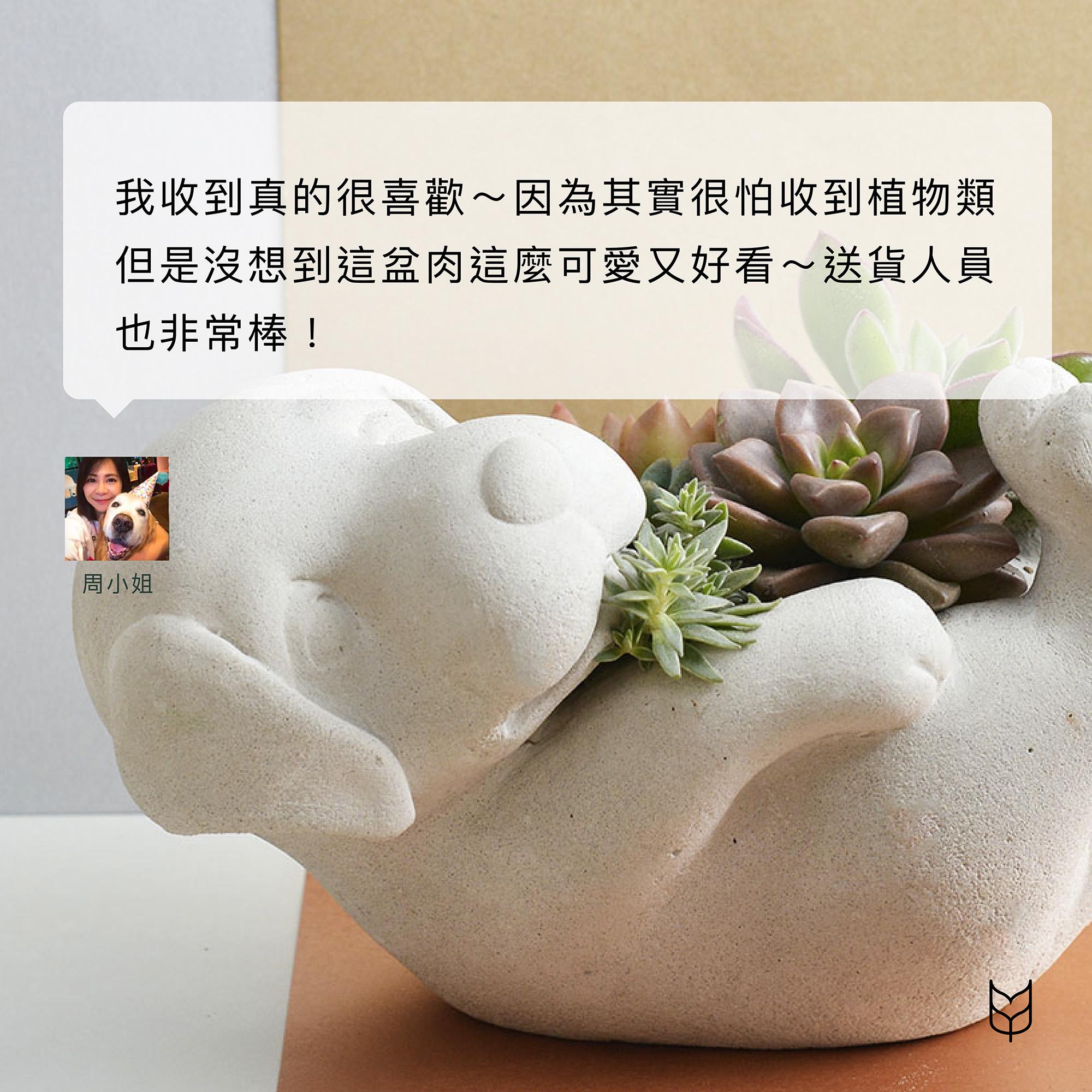 萌萌狗 - 招貴人組盆 10