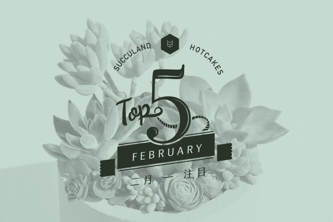 有肉:網路花店 2 月開幕送禮 TOP 4 top5 sep succland cake 0314 o 01