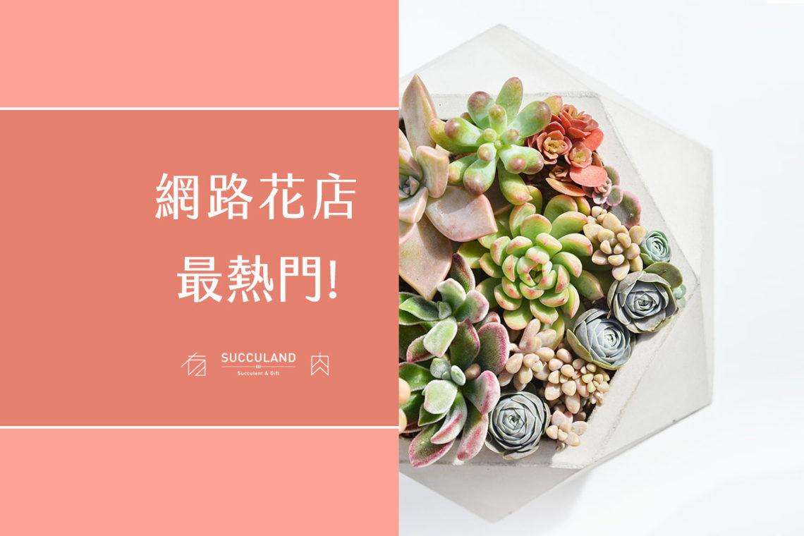 多肉植物盆栽介紹,來自有肉的熱門送禮盆栽推薦,網路盆栽店的好選擇