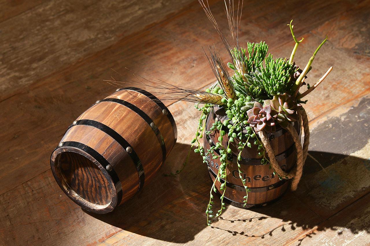 多肉組盆課程,蘇格蘭的生命之水,酒桶造型組合盆栽教學