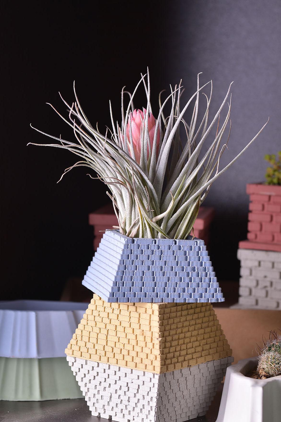 小金字塔(四色)+棉花糖空氣鳳梨 8