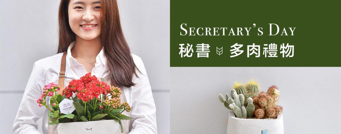 秘書節的療癒多肉盆栽 Secretary's Day 9
