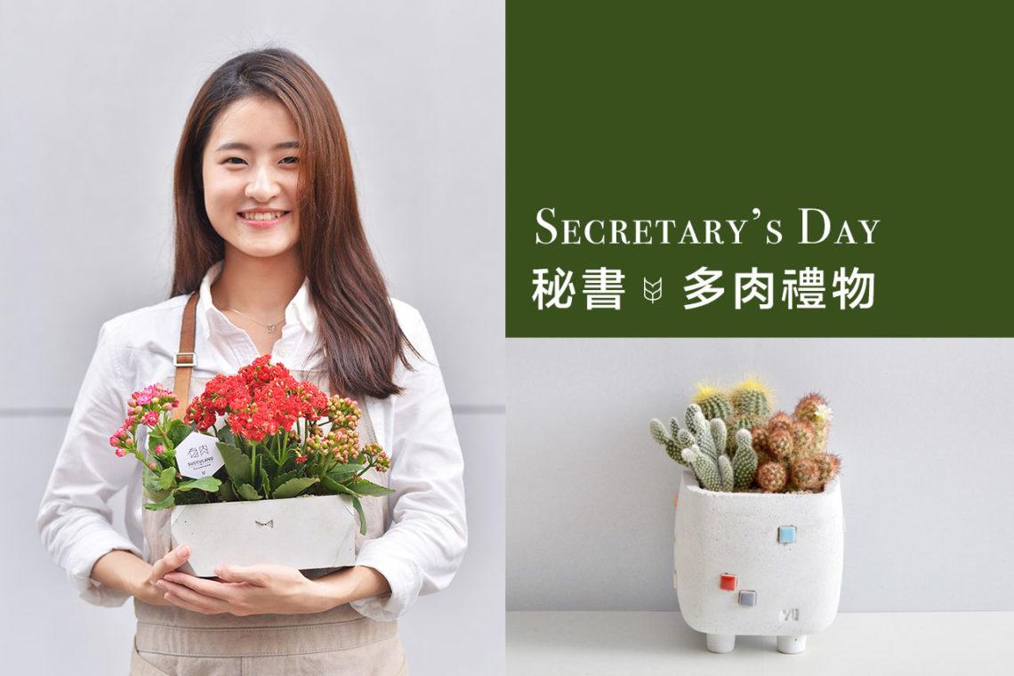 秘書節的療癒多肉盆栽 Secretary's Day 1