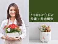 秘書節的療癒多肉盆栽 Secretary's Day 28