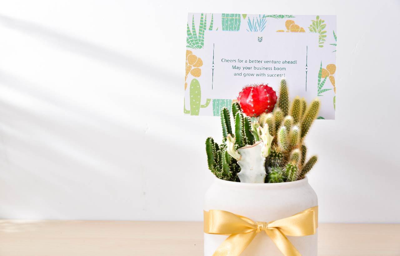 開幕賀卡(開張花牌)的英文祝賀詞,將心裡話與祝福的話寫在上面,加上這幾句開店祝福語讓這份禮物更加有意義