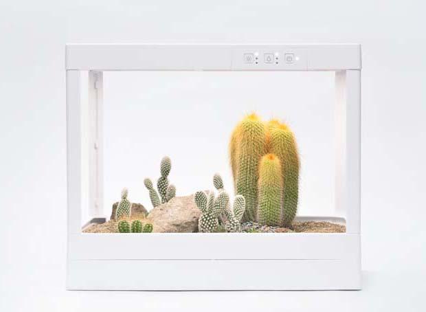 生態箱 12