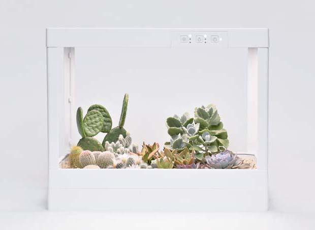 生態箱 14
