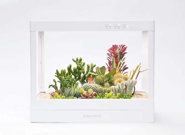 生態箱 16
