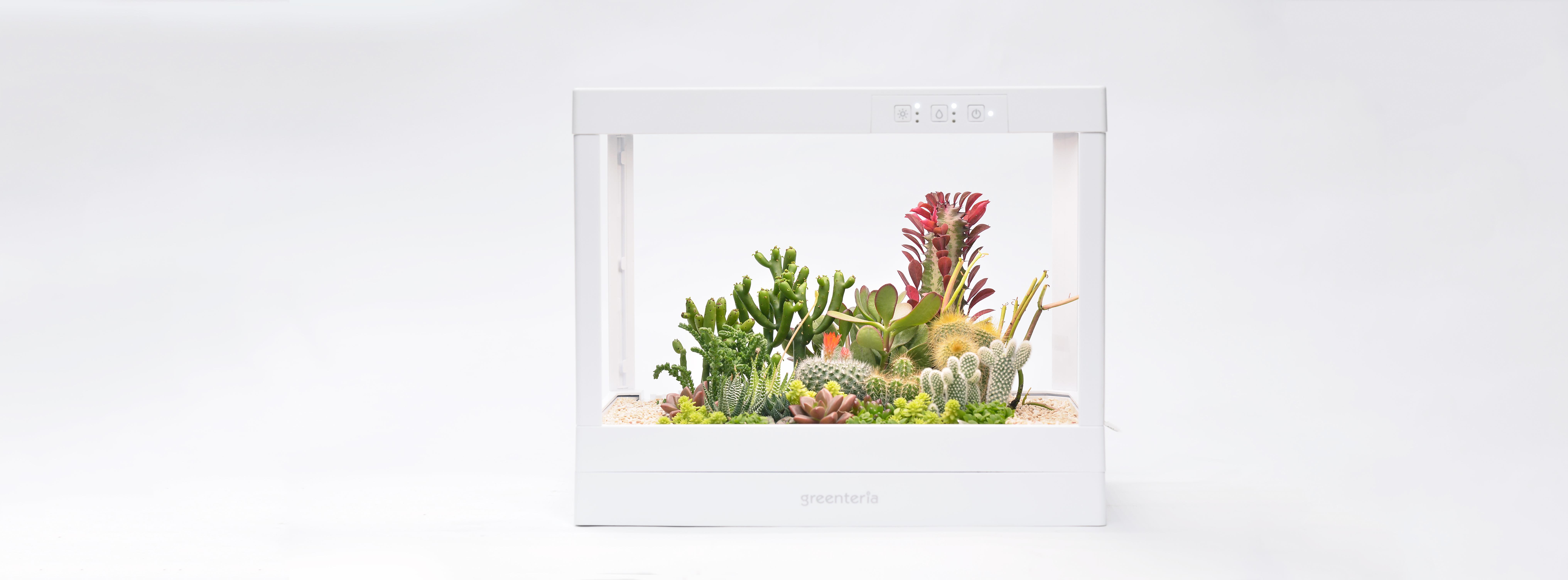 生態箱 6