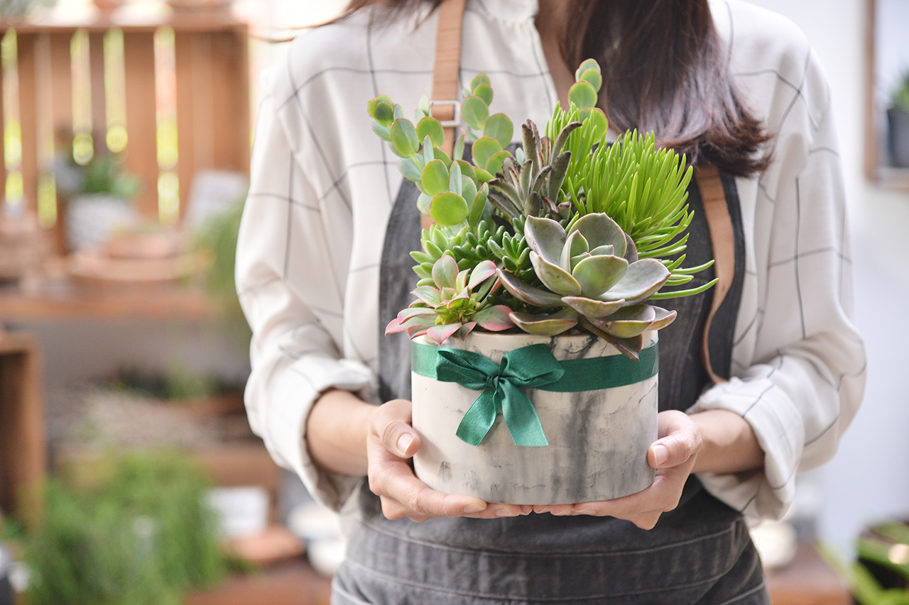 多肉植物搭配大理石材質的花盆,非常特別的組合,也是非常有質感、高雅的花禮推薦
