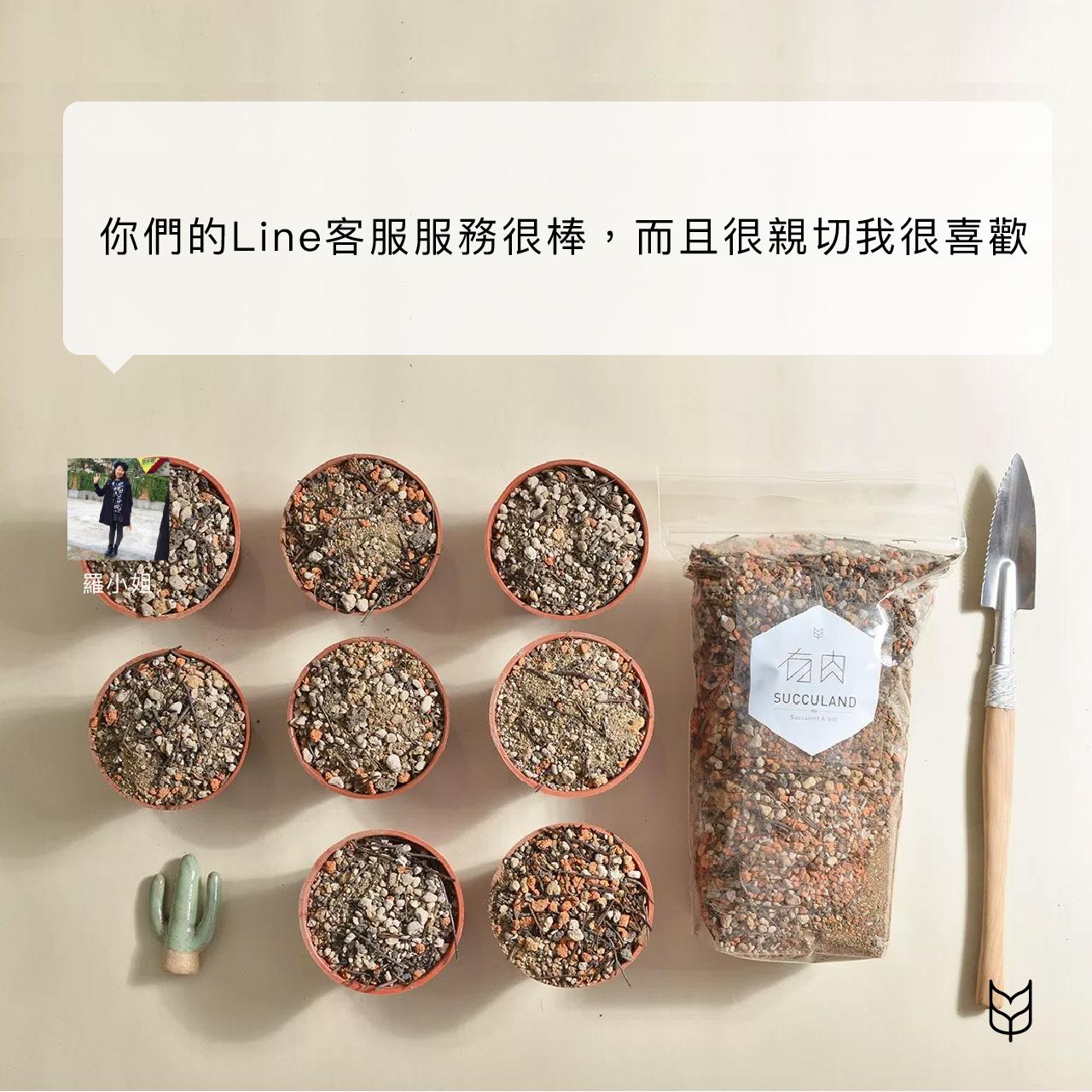 多肉植物專用土購買者心得