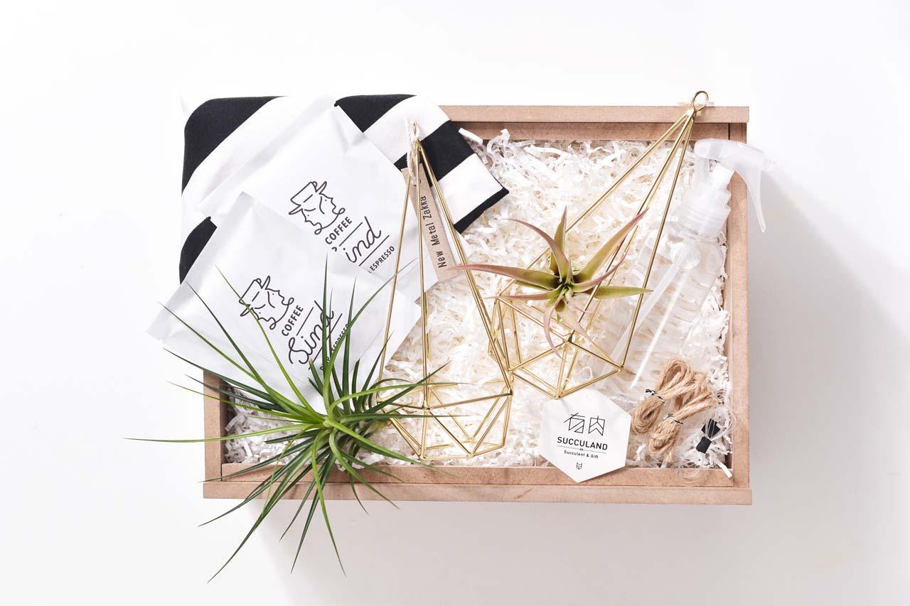 空氣鳳梨禮物盒gift box