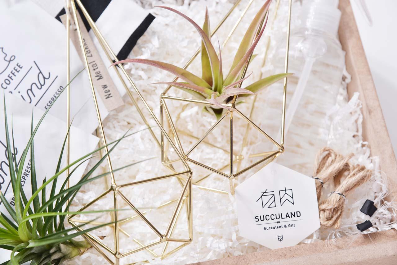 空氣鳳梨掛架與禮物盒商品