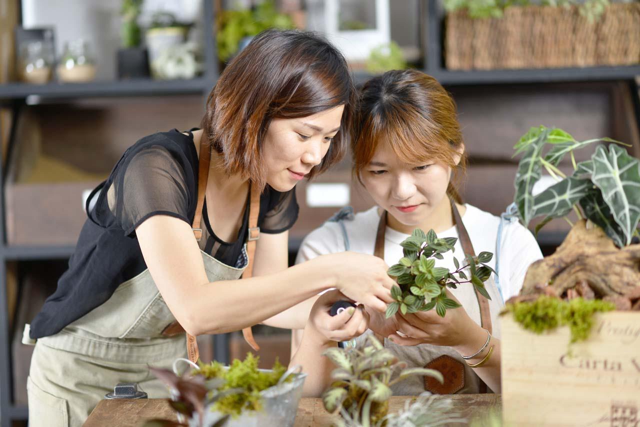 苔球的照顧方法也同樣會在課程中告訴大家,完成的苔球盆栽絕對會讓你驚艷