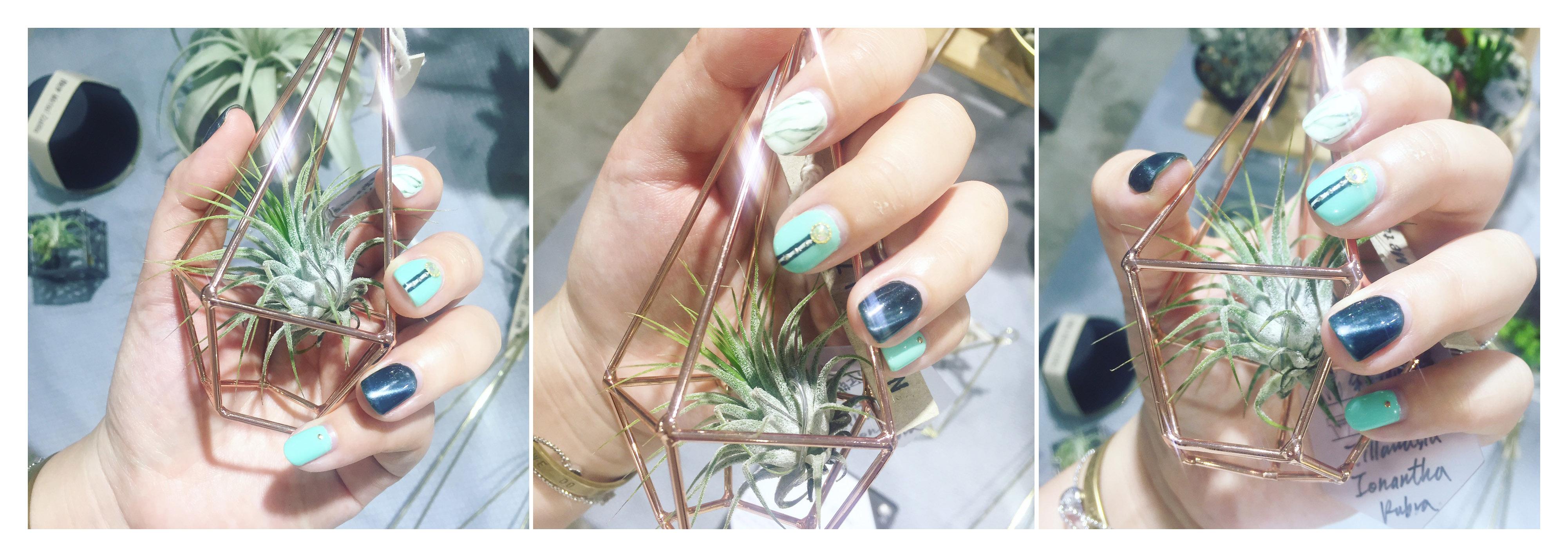 鑽石型空氣鳳梨掛架搭配空氣鳳梨小精靈,適合展示美甲&社交打卡