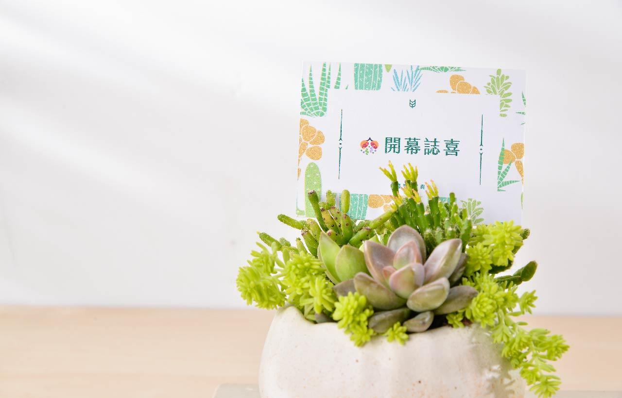 高雄送禮推薦多肉植物盆栽,讓開幕送禮的質感提升一個階層,特殊的花卡、卡片造型更吸引目光