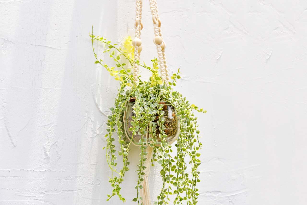 花式編織掛繩課程,課程完成品,搭配垂吊型多肉植物的玻璃盆器