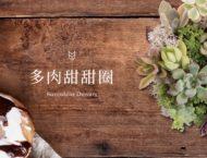 [ 多肉花藝 ] 多肉甜甜圈 10