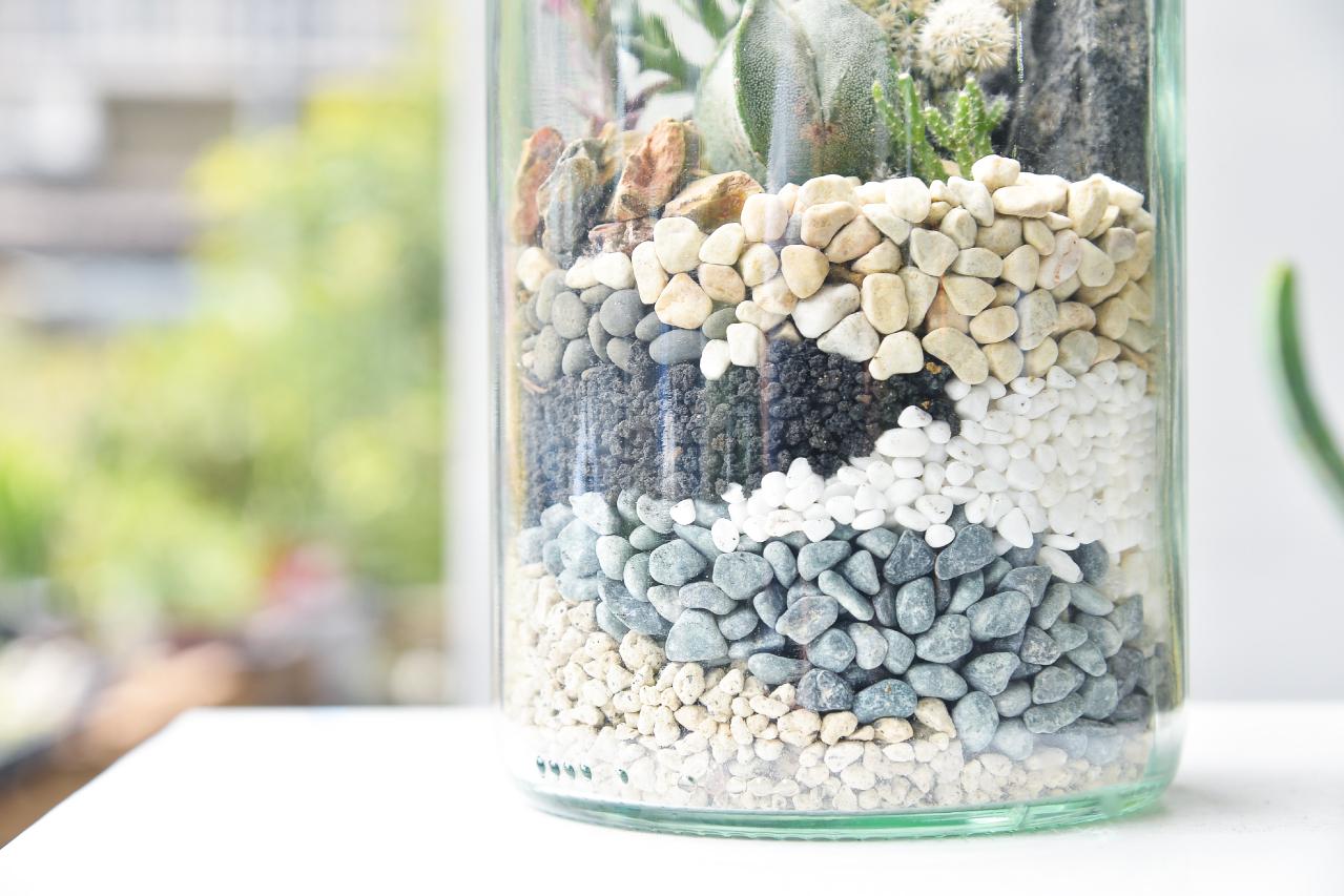 讓你的組合盆栽可以有更多創作的元素,不同的色彩帶來不同的心情