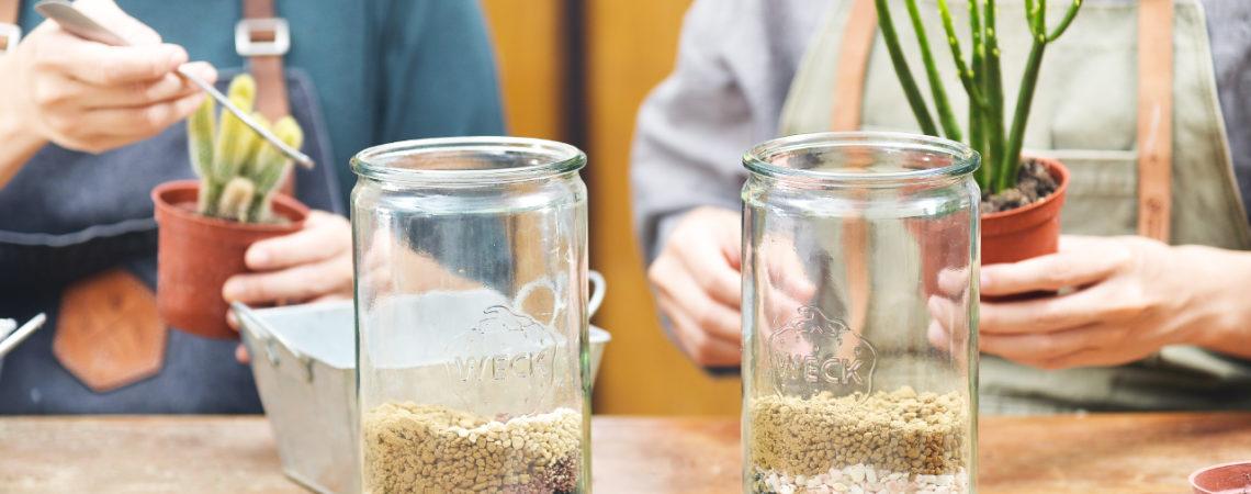 玻璃多肉組盆 燦爛天石多肉瓶 多肉組盆課 台北手作教室