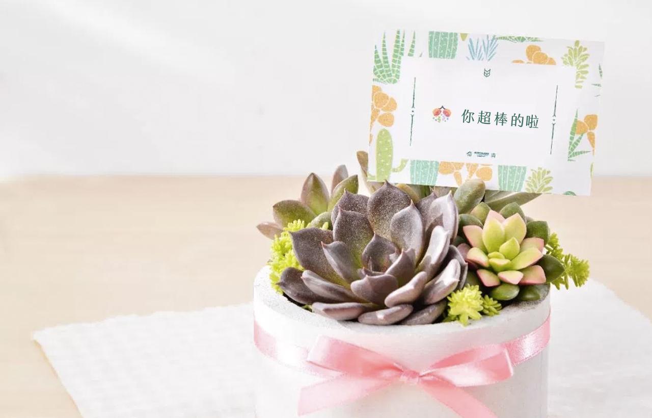 升官榮升送禮賀卡推薦加上表情符號,讓這一份祝賀升官的禮物能夠更加充實