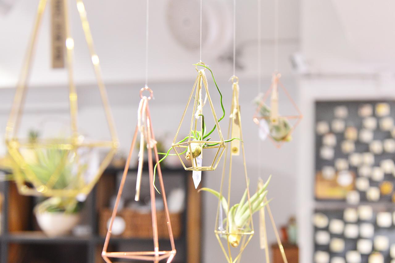 萬聖節去哪玩?4 個植物系活動! 1