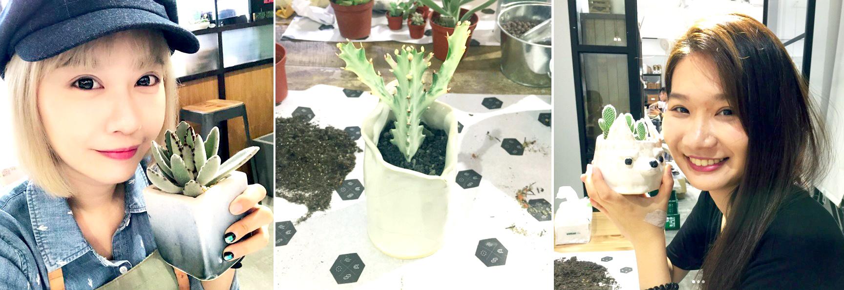 手捏陶盆,多肉植栽,多肉組盆,陶藝課程,學員評價滿分,大家都喜歡