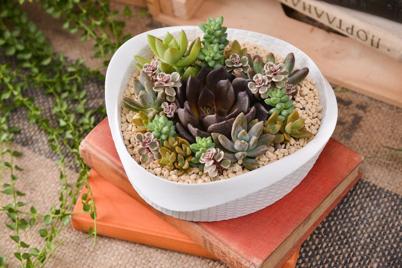 組合盆栽結合五行的色彩意涵,讓收到禮物的人也能順利提升運勢
