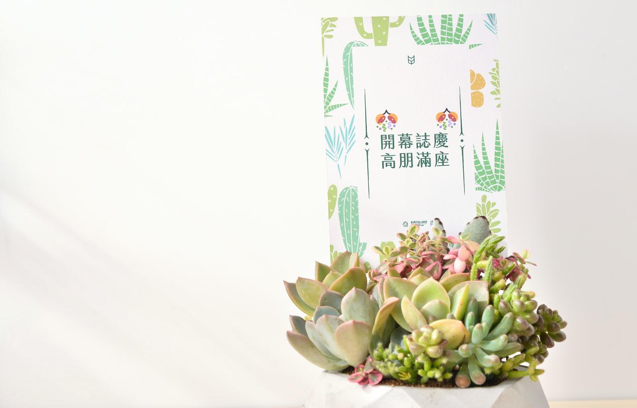 盆栽搭配著賀詞卡片