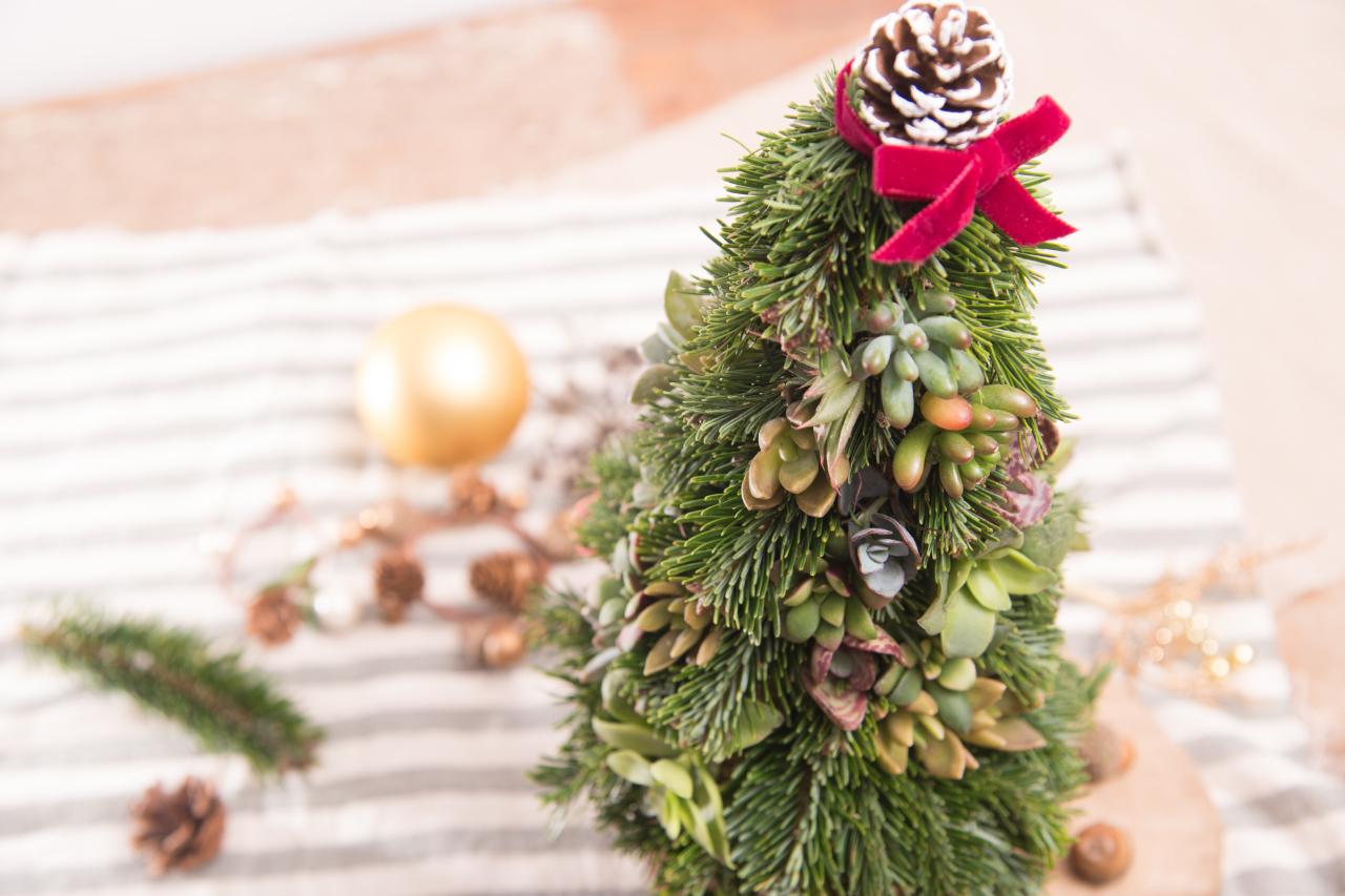 多肉聖誕樹俯角視野,滿滿的諾貝松與多肉植物裝飾,彷彿炸開來一樣的密集感