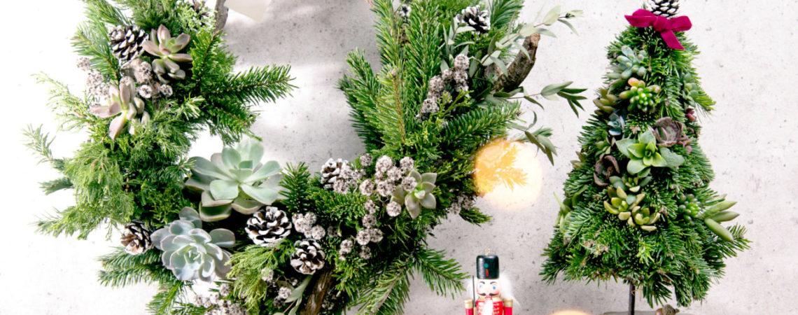 多肉聖誕樹與多肉聖誕花圈都是超級美的,如果想要自己製作,我們也有開辦每年一次的限量聖誕課程!可以向老師學習如何製作一個聖誕佈置呢