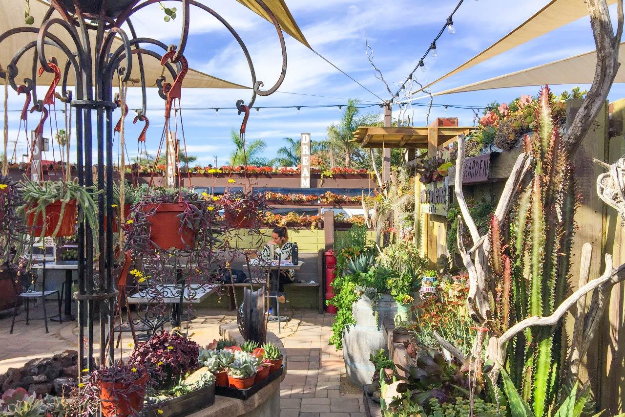 加州植物景點