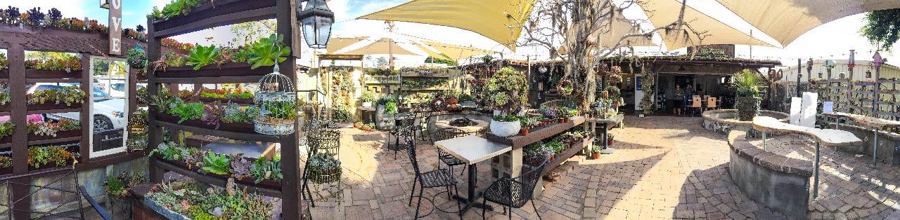 succulents cafe 環景照