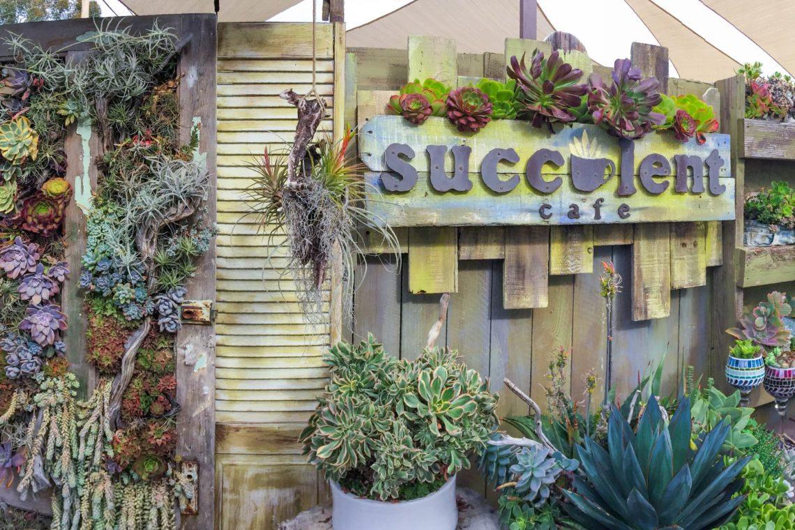 南加州景點遊記:Succulent Cafe 多肉植物咖啡廳 01首圖_多肉甜甜圈2工作區域 1