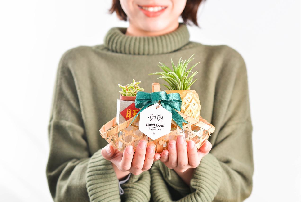 新竹的升官禮物,就送多肉盆栽! 1 複本 4