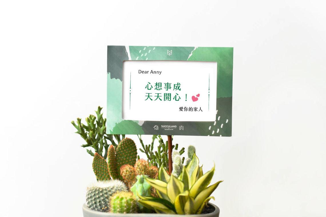 0606 祝賀詞與祝賀卡片推薦-生活篇01