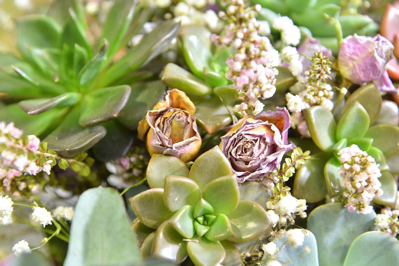 乾燥花與多肉花束