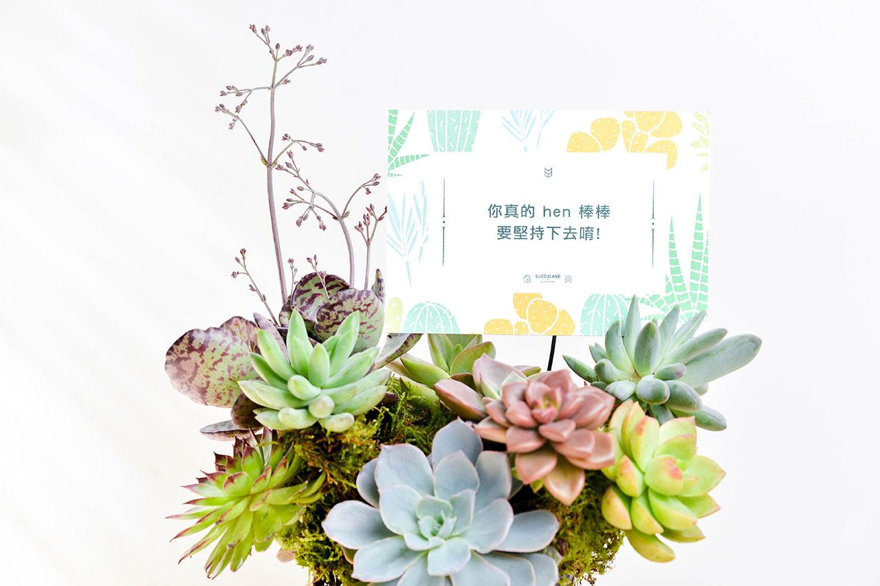 開幕盆栽上還可以插上寫著開業大吉的插卡小卡片,把心裡的話說出來,讓祝福化為實體,直接告訴朋友