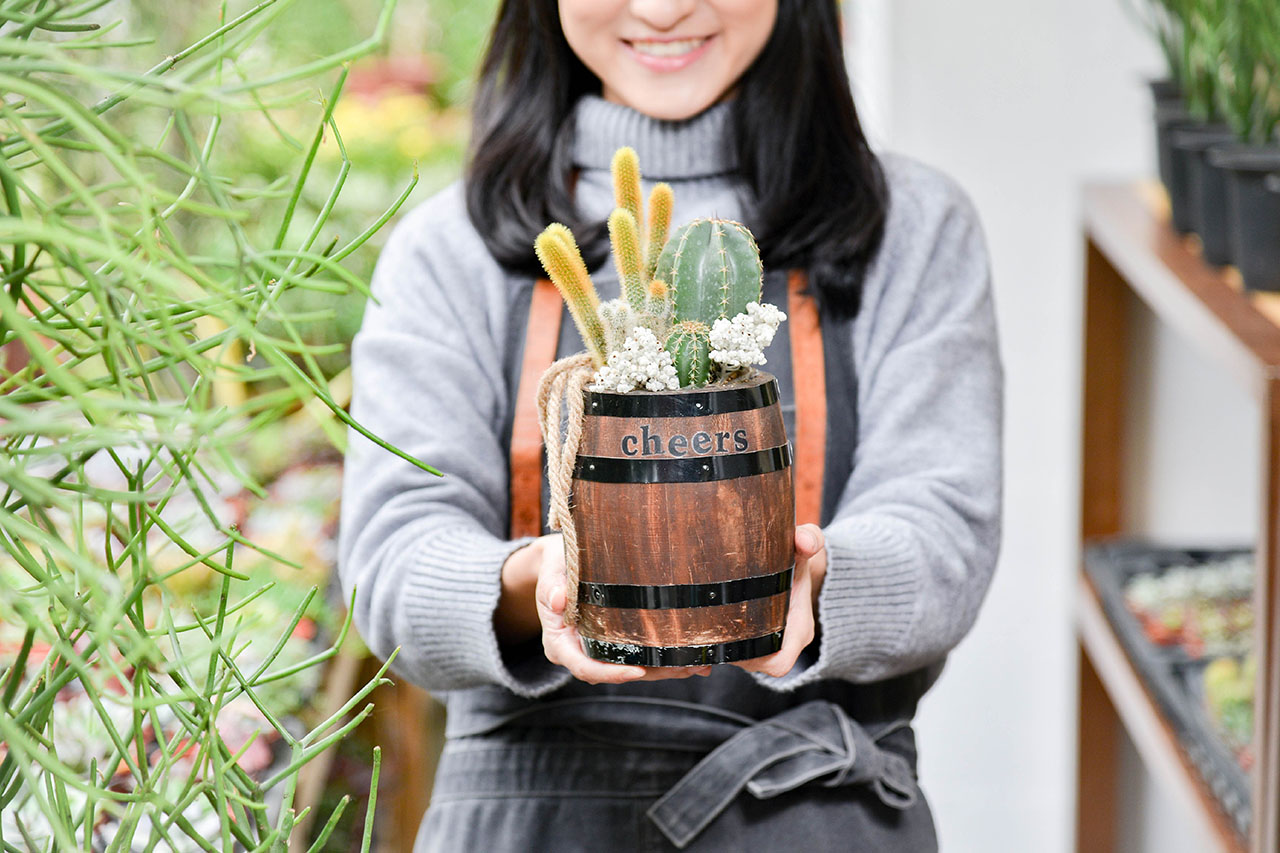 精釀啤酒 - 仙人掌盆栽 10