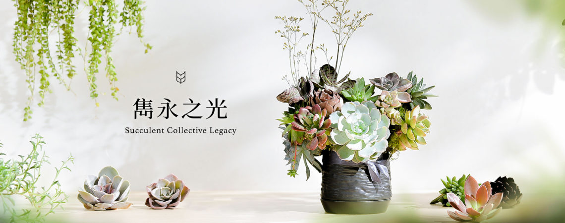 [ 花藝課程 ] 雋永之光:多肉盆花 1920X760 2