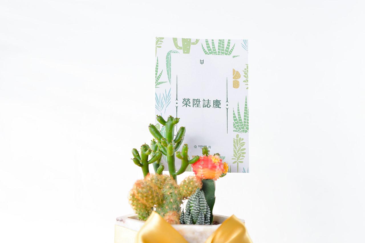 粉色大理石盆 - 抓錢寶盒(中六角) 9