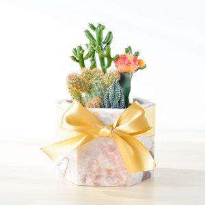 粉色大理石盆 - 抓錢寶盒(中六角) 1