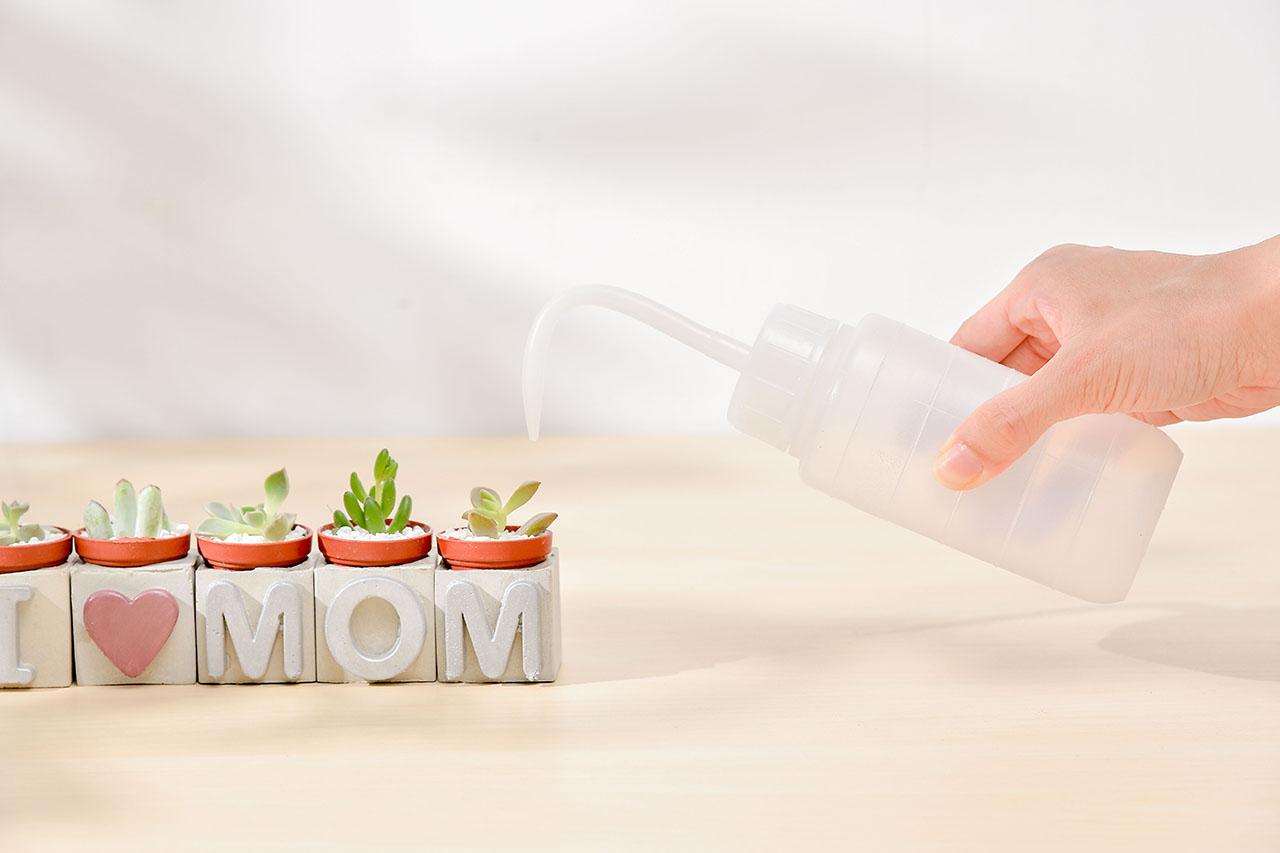 母親節禮物照顧方式