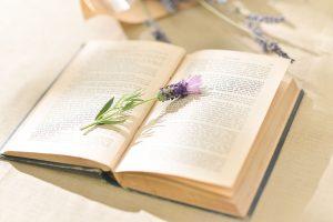 多肉野餐詩-夏之章插花課程-書本與薰衣草