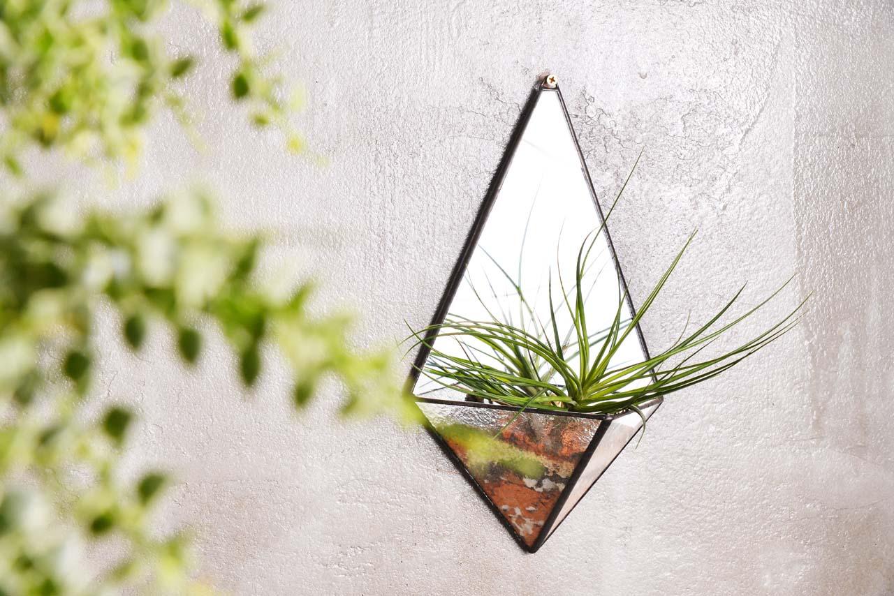 空氣鳳梨當作開幕盆栽組,就是最高質感的花器達到最高的標準,飄在空中轉來轉去超療癒